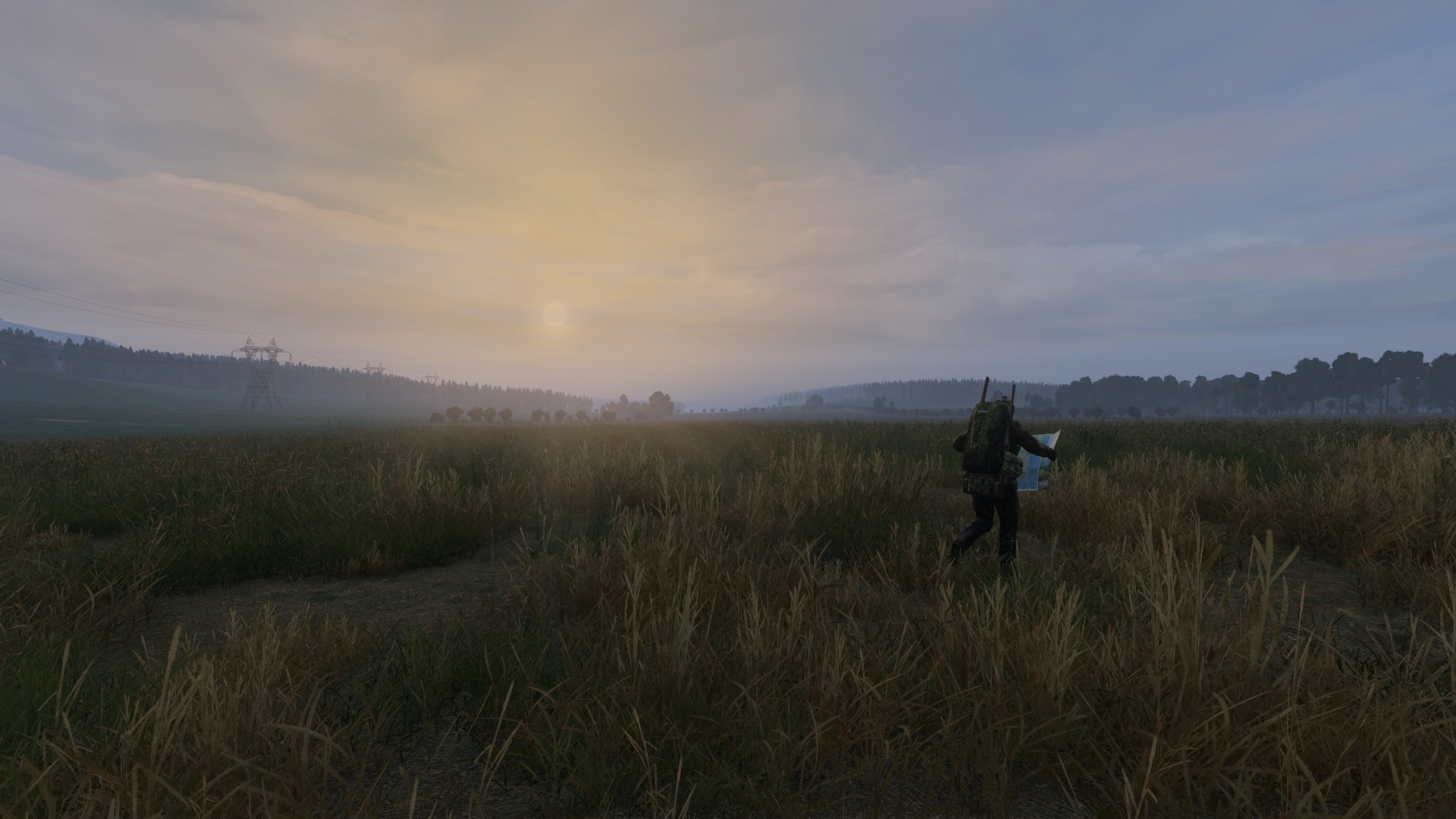 DayZ Rostow Map